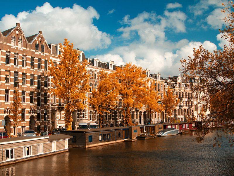 BARTENDING IN AMSTERDAM