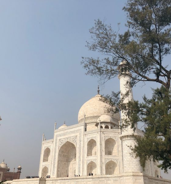 INDIA [PART 2] : 5 DAYS DISCOVERING NEW DELHI AND RAJASTHAN WITH AIR ITALY